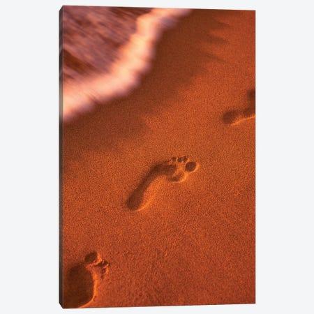 Beach Path Canvas Print #DEN37} by Dennis Frates Canvas Art Print