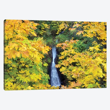 Waterfall Frame Canvas Print #DEN386} by Dennis Frates Canvas Wall Art