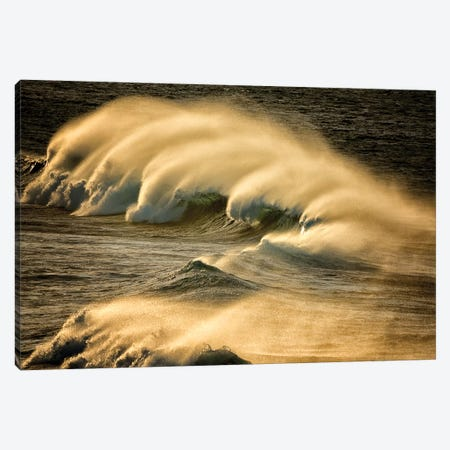 Wind Blown Wave Canvas Print #DEN398} by Dennis Frates Canvas Wall Art