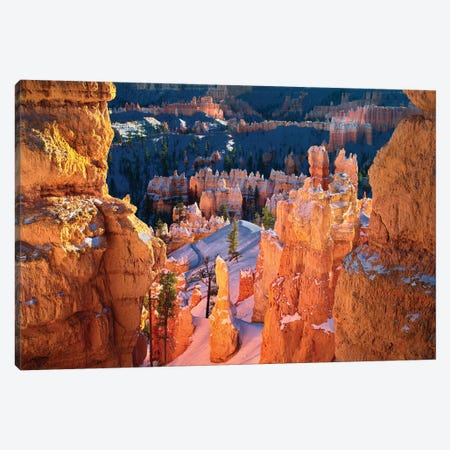 Bryce Pinnacles Canvas Print #DEN46} by Dennis Frates Canvas Artwork