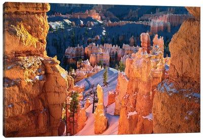 Bryce Pinnacles Canvas Art Print