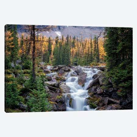 Canadian Falls Canvas Print #DEN51} by Dennis Frates Canvas Wall Art