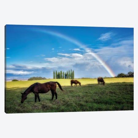 Rainbow Pasture Canvas Print #DEN597} by Dennis Frates Art Print