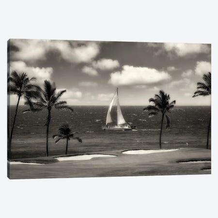 Tropical Sail Canvas Print #DEN602} by Dennis Frates Canvas Wall Art