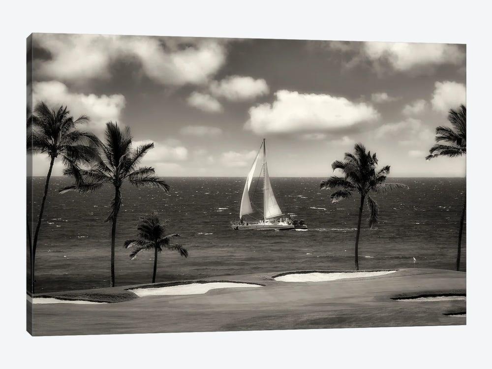 Tropical Sail by Dennis Frates 1-piece Canvas Wall Art