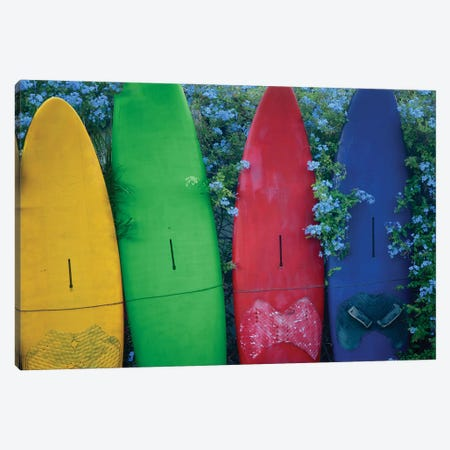 Surfboards And Flowers Canvas Print #DEN610} by Dennis Frates Art Print