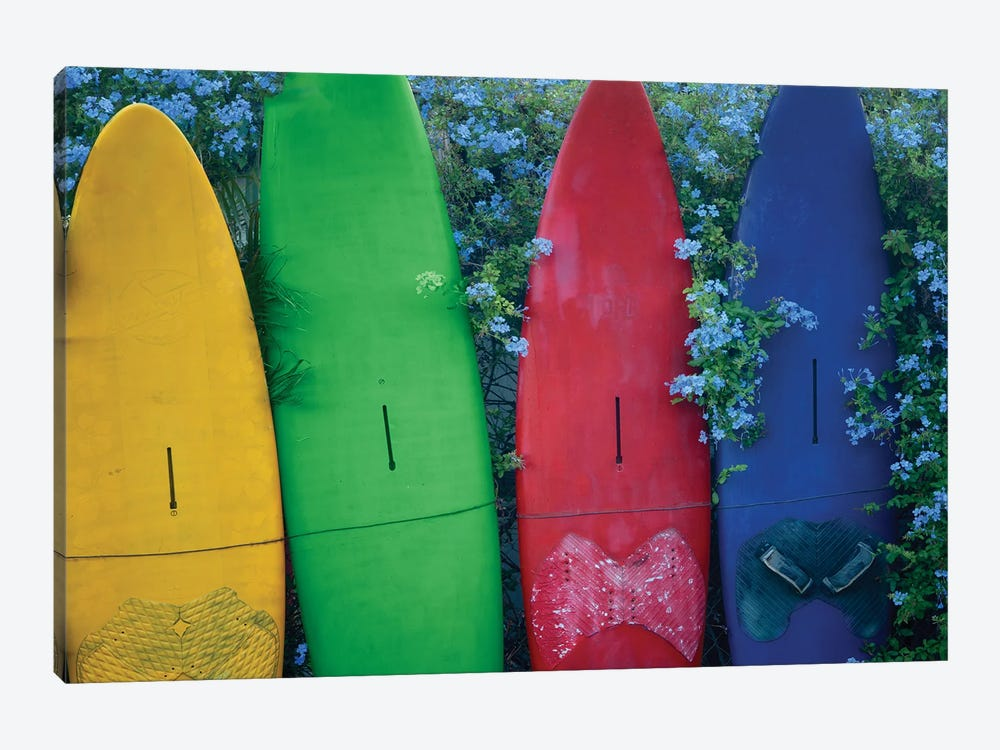 Surfboards And Flowers by Dennis Frates 1-piece Art Print