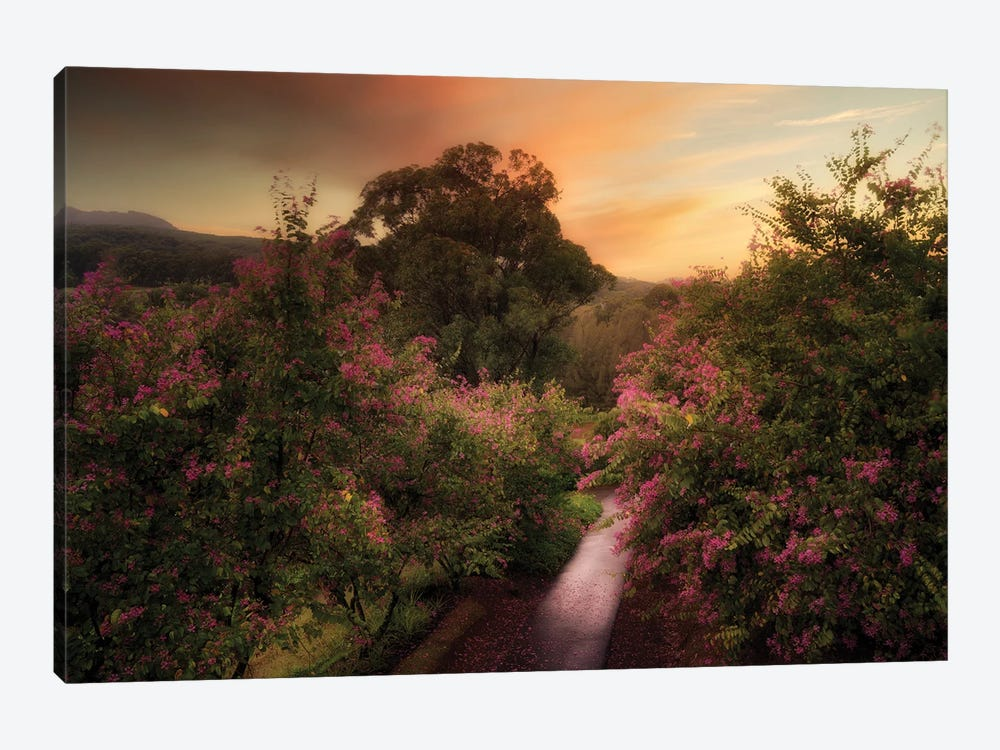 Painterly Road by Dennis Frates 1-piece Canvas Wall Art