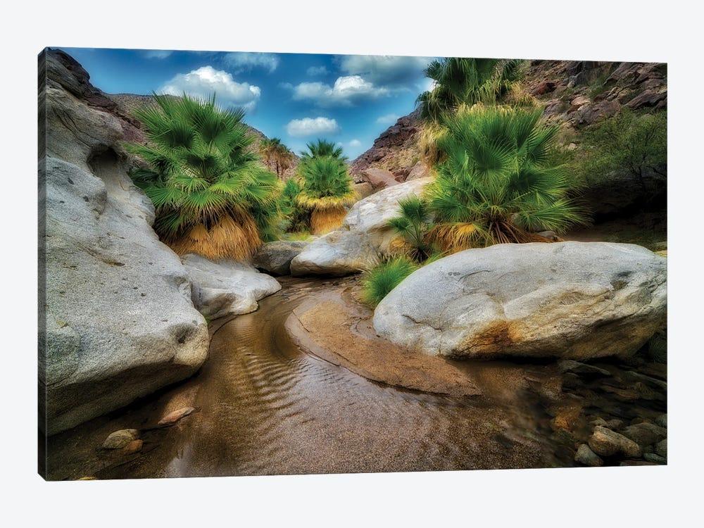 Palm Oasis by Dennis Frates 1-piece Canvas Artwork