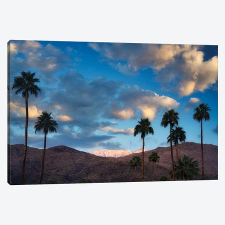 Palm Desert Snowfall I Canvas Print #DEN632} by Dennis Frates Canvas Art Print