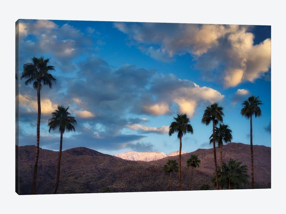 Palm Desert Snowfall I by Dennis Frates 1-piece Art Print