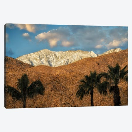 Palm Desert Snowfall II Canvas Print #DEN633} by Dennis Frates Canvas Print