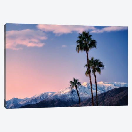 Palm Desert Snowfall III Canvas Print #DEN634} by Dennis Frates Canvas Artwork