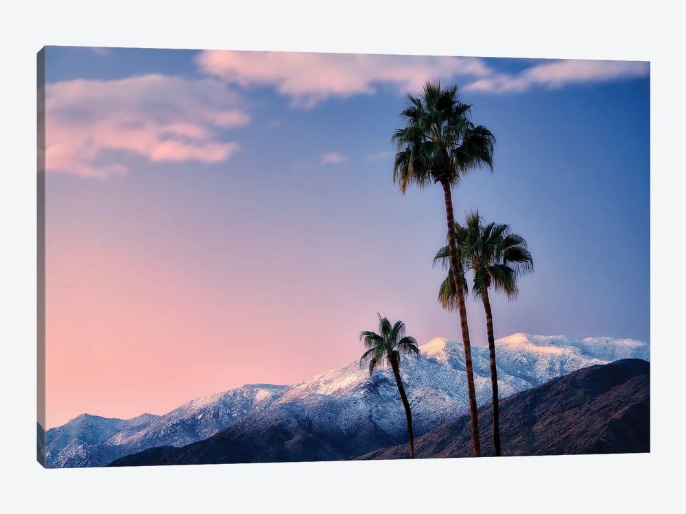 Palm Desert Snowfall III by Dennis Frates 1-piece Canvas Print