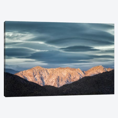 Palm Desert Snowfall IV Canvas Print #DEN635} by Dennis Frates Canvas Artwork