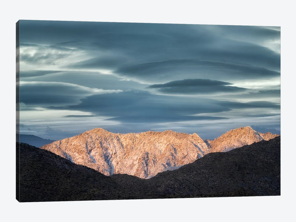 Palm Desert Snowfall IV 1-piece Canvas Wall Art