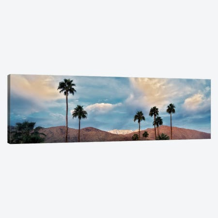 Palm Desert Snowfall VI Canvas Print #DEN639} by Dennis Frates Art Print