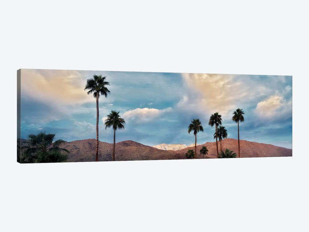 Palm Desert Snowfall VI by Dennis Frates 1-piece Canvas Artwork