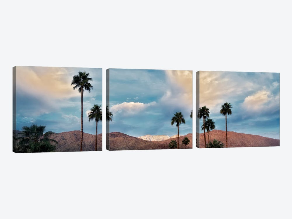 Palm Desert Snowfall VI by Dennis Frates 3-piece Canvas Art