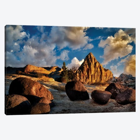 Capitol Reef Boulders Canvas Print #DEN64} by Dennis Frates Canvas Wall Art
