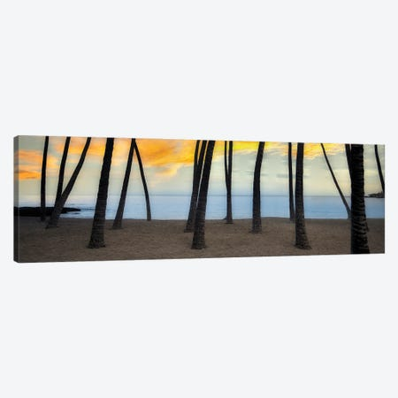 Palm Beach Canvas Print #DEN652} by Dennis Frates Canvas Art Print
