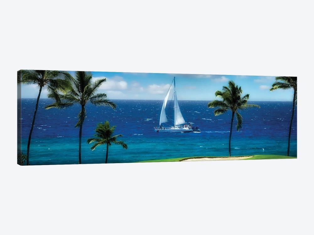 Tropical Sailing II by Dennis Frates 1-piece Canvas Art Print