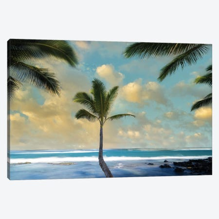 Palm Sunrise I Canvas Print #DEN668} by Dennis Frates Canvas Artwork