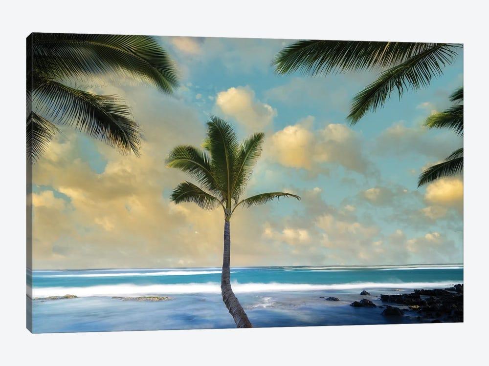 Palm Sunrise I by Dennis Frates 1-piece Canvas Wall Art