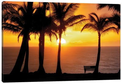 Sunset VIew Canvas Art Print