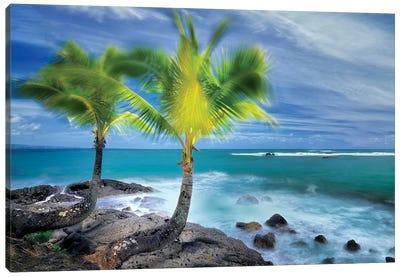 Tropical Together I Canvas Art Print
