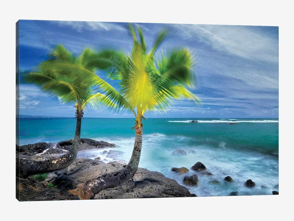 Tropical Together I by Dennis Frates 1-piece Canvas Print
