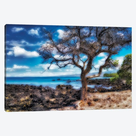 Hawaiian Coast Canvas Print #DEN706} by Dennis Frates Canvas Art