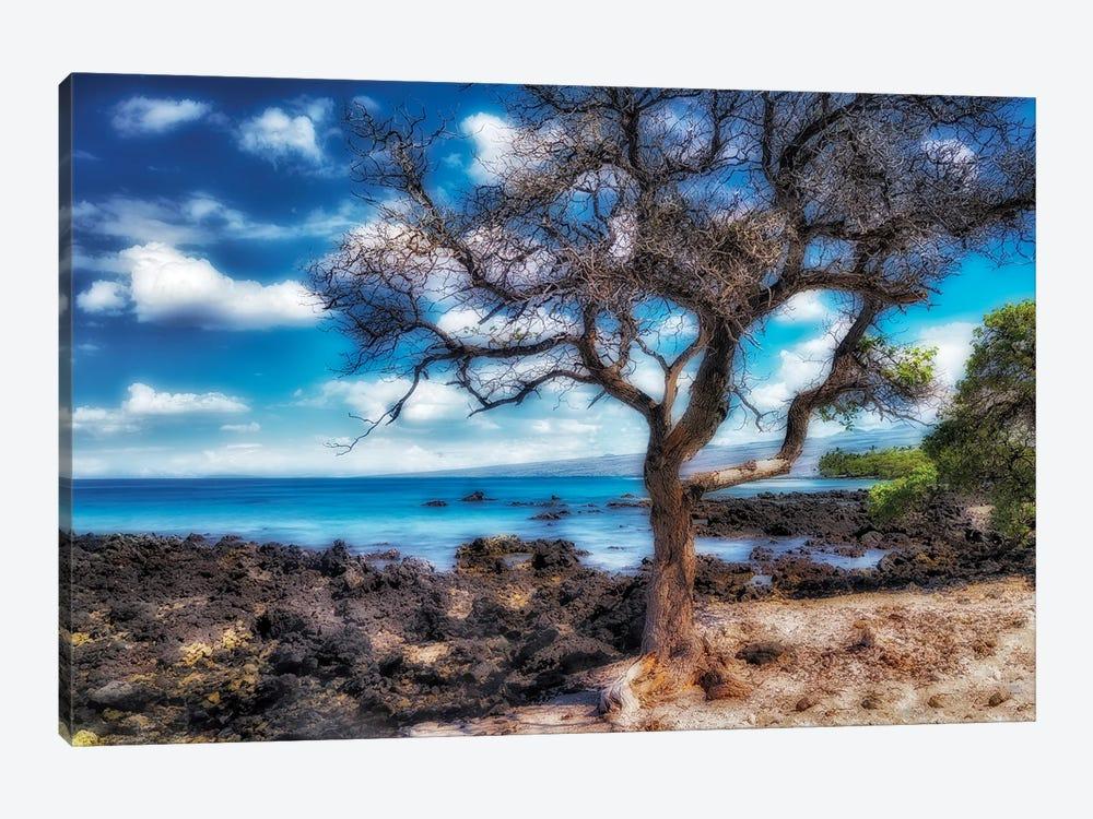 Hawaiian Coast by Dennis Frates 1-piece Art Print