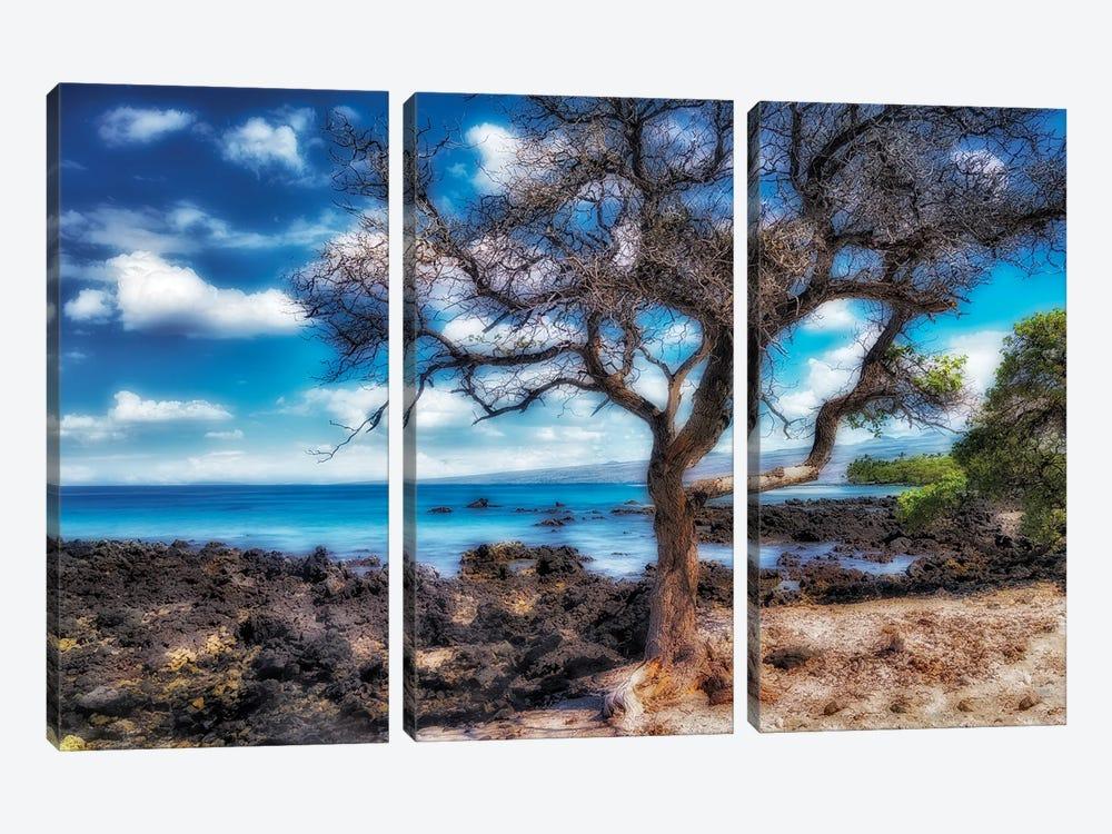 Hawaiian Coast by Dennis Frates 3-piece Canvas Art Print