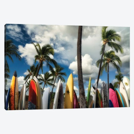 Surfboards Canvas Print #DEN711} by Dennis Frates Canvas Artwork