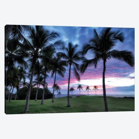 Golf Sunset IV Canvas Print #DEN721} by Dennis Frates Canvas Art Print