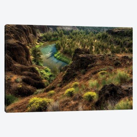 Desert Canyon Stream Canvas Print #DEN96} by Dennis Frates Art Print