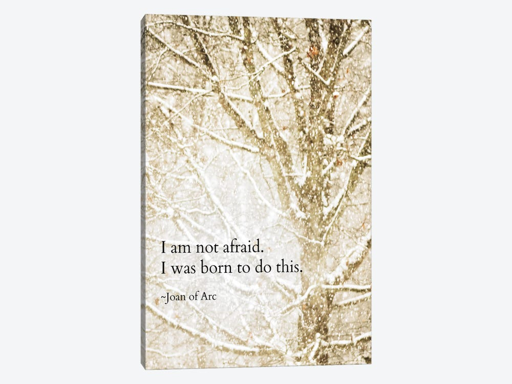 I Am Not Afraid by Debbra Obertanec 1-piece Canvas Wall Art