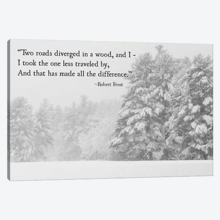 Two Roads Diverged Canvas Print #DEO86} by Debbra Obertanec Canvas Art Print