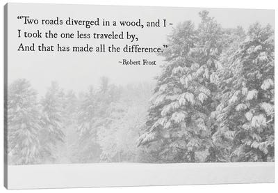 Two Roads Diverged Canvas Art Print