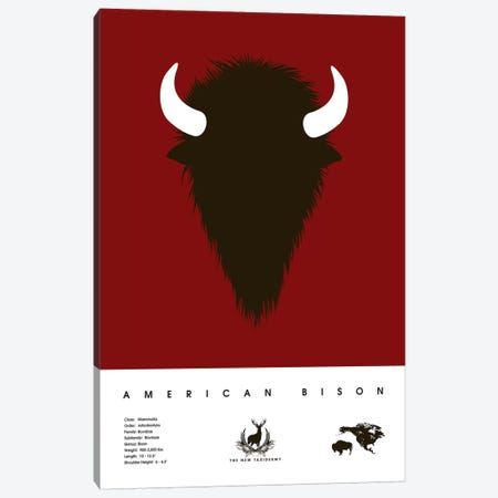American Bison Canvas Print #DES27} by 2046 Design Art Print