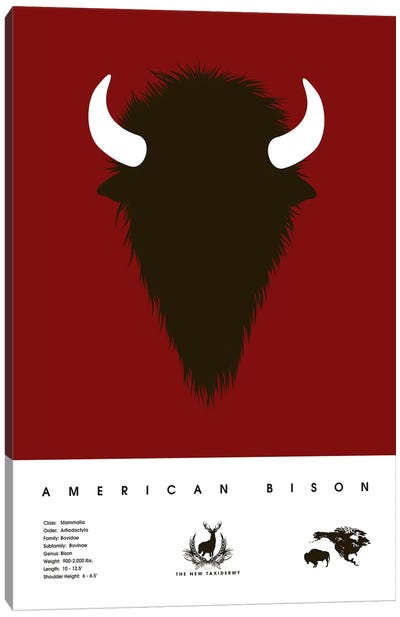 The New Taxidermy: American Bison Canvas Print #DES27