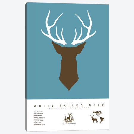 White Tailed Deer Canvas Print #DES29} by 2046 Design Canvas Artwork