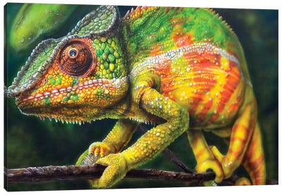 Chameleon Panther Canvas Art Print