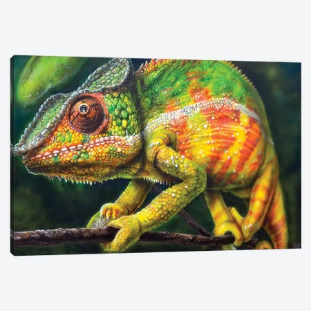 Chameleon Panther Canvas Print #DET11} by Derek Turcotte Canvas Artwork
