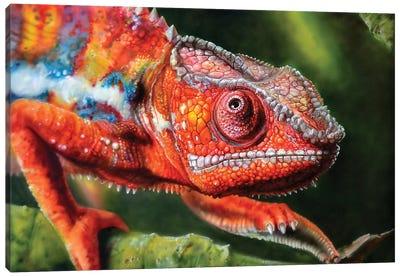 Chameleon Red Canvas Art Print