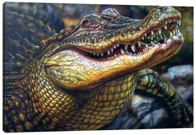 Crocodile Canvas Art Print