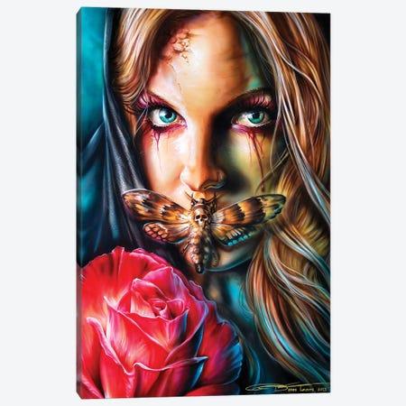 Deathmoth Canvas Print #DET16} by Derek Turcotte Canvas Art Print