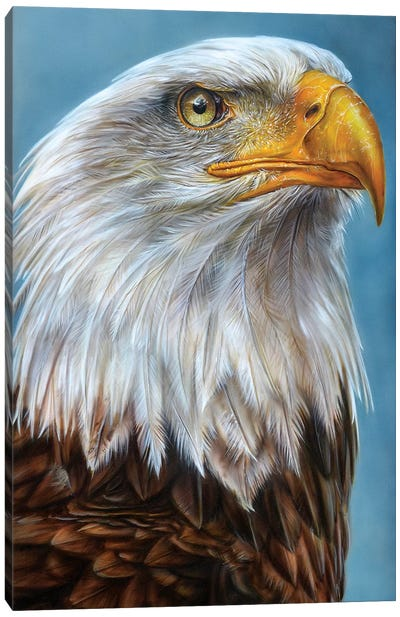 Eagle Canvas Art Print