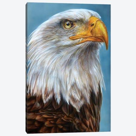 Eagle Canvas Print #DET17} by Derek Turcotte Canvas Art Print